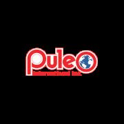 Puleo International